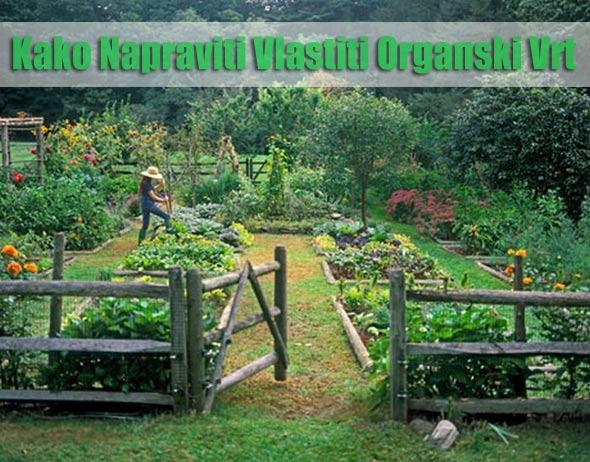 organski-vrt-povrce
