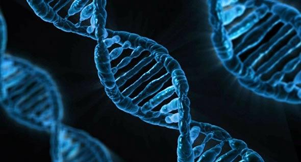 genetičko-inzenjerstvo