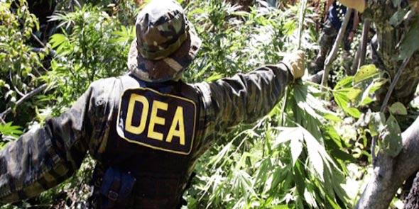 dea-droga-bolivija