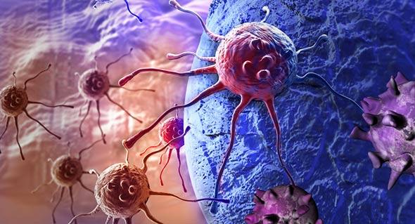 rak-tijelo