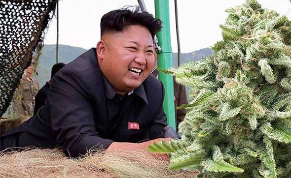 kim-jung-marihuana
